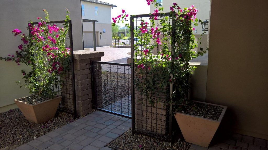 Two Post Mounted Framed Woven Wire Mesh Trellis With A Matching Gate Were Used To Accent This Entry Walkway